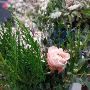 Роза из Мастерской букетов chuvstva.store